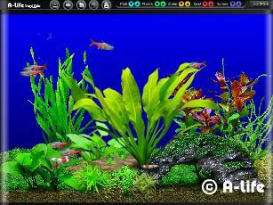 熱帯魚 スクリーンセーバー 無料 ダウンロード